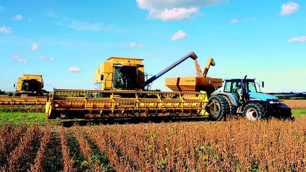La renta agropecuaria en su nivel más alto: sextuplicó sus ganancias