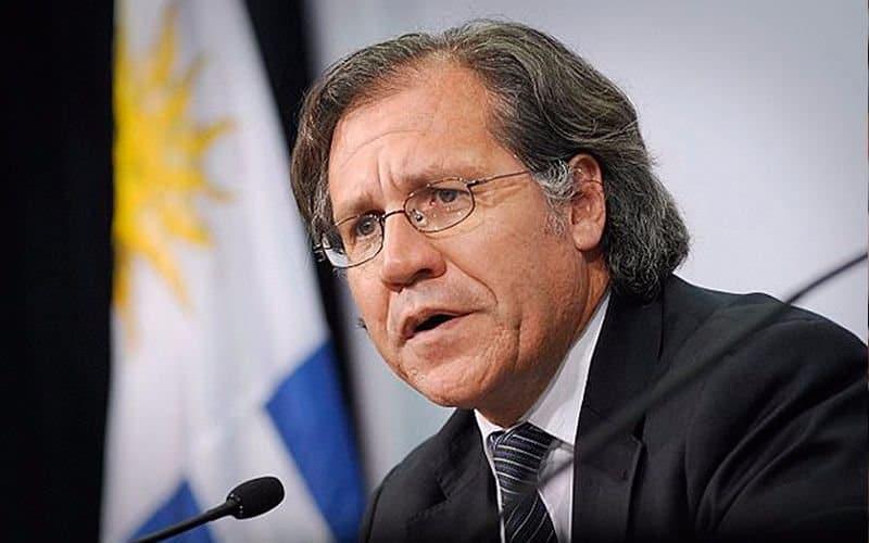 La OEA pide la inmediata liberación de Milagro Sala