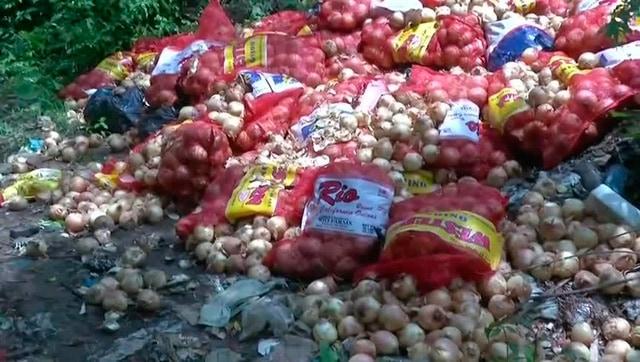 Productores salteños tiran cosecha de cebolla afectados por las importaciones de Brasil