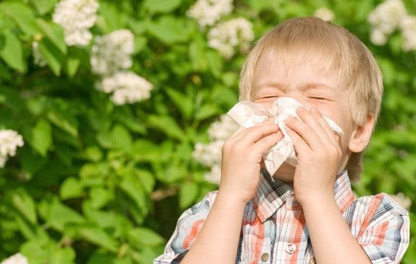 alergias en otoño