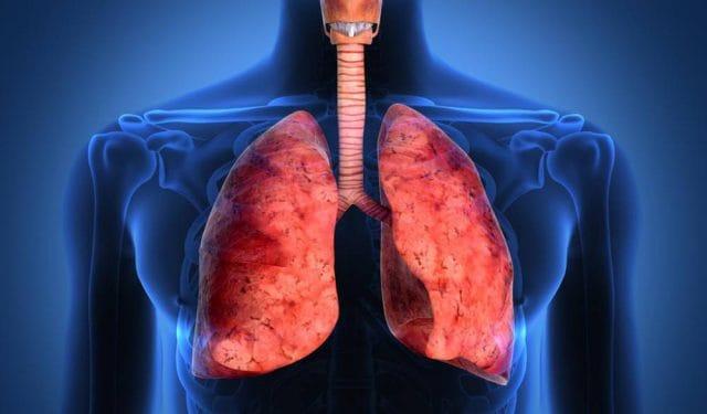 Inmunoterapias para cáncer de pulmón y de vejiga metastásico fueron aprobados en Argentina