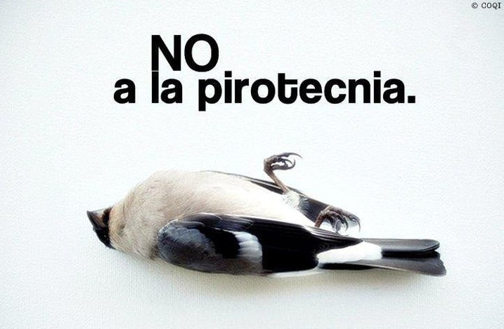 El Municipio prohibió la pirotecnia en Parque Leloir, Barrio Aeronáutico e Ituzaingó Sur