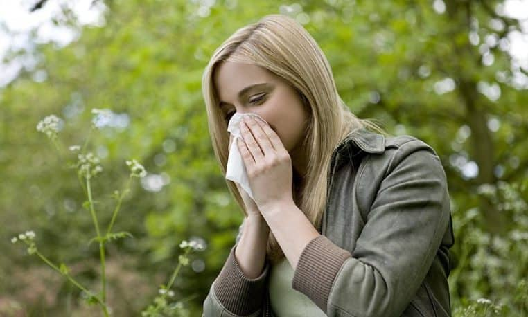 Cómo evitar las alergias de verano