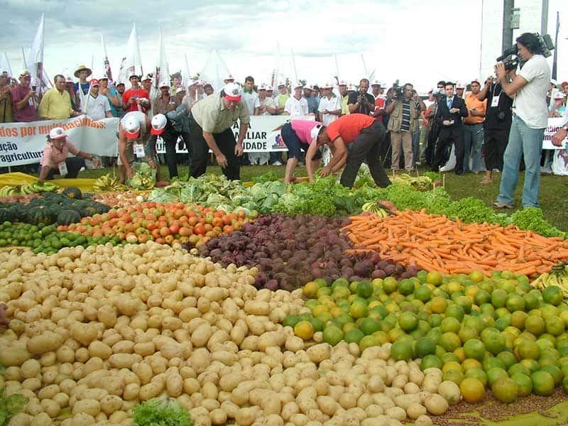 Taller de Soberanía Alimentaria para saber qué comemos y de dónde viene