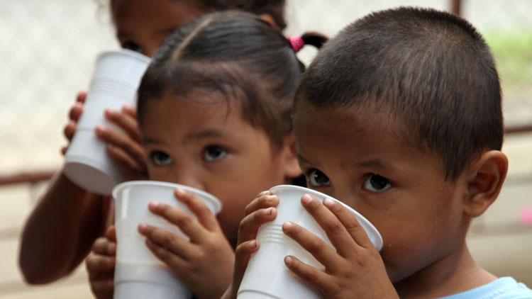Según datos oficiales, hoy el consumo de leche por persona es más bajo que en el 2003