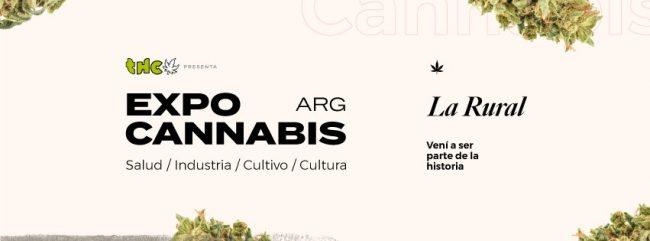 """Casandra Collazo: """"El Cannabis me devolvió a mi hijo"""" 1"""