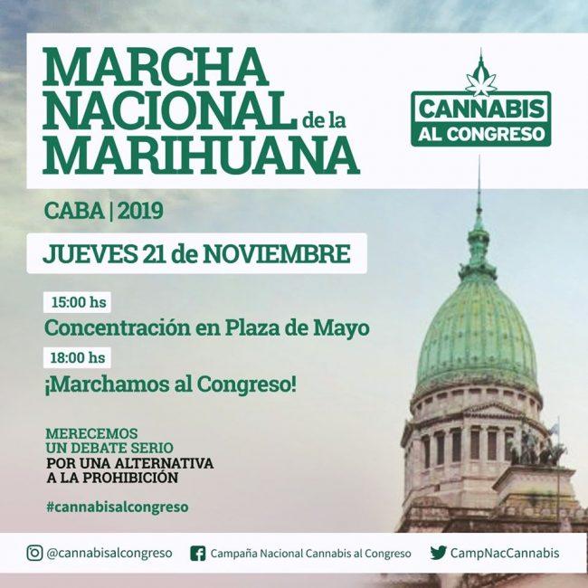"""Casandra Collazo: """"El Cannabis me devolvió a mi hijo"""" 3"""
