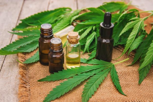 """""""Un año verde"""": El gobierno nacional quiere una ley que legalice el uso del cannabis"""
