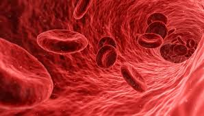Tener un tipo se sangre predispone al paciente a un caso grave de coronavirus